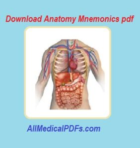 anatomy mnemonics pdf