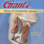 Download Grant's Atlas Of Anatomy pdf 12th Edition