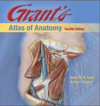 Netter Atlas Of Human Anatomy Pdf All Medical Pdfs