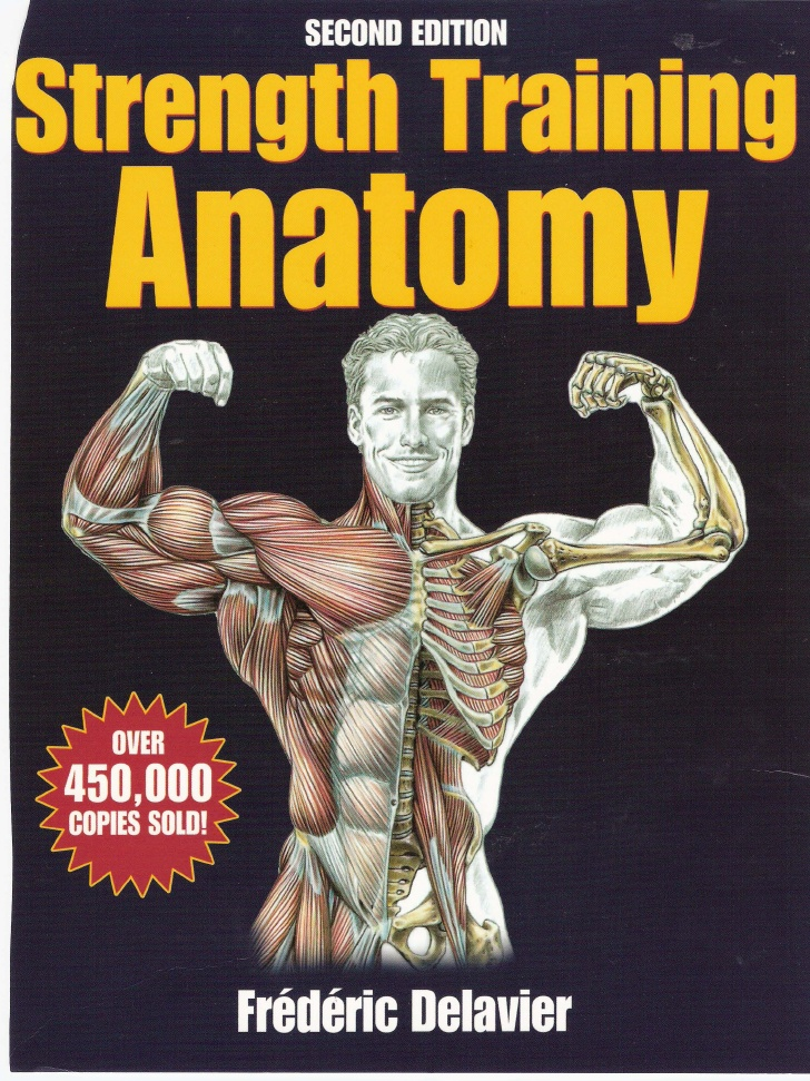 Strength Training Anatomy Pdf