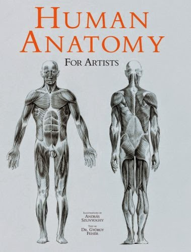 human anatomy for artist pdf