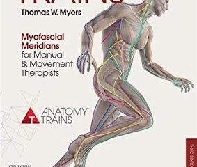 anatomy trains pdf