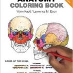 Human Anatomy Coloring Book Pdf Free Download