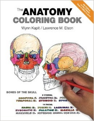 Human Anatomy Coloring Book Pdf