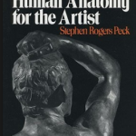 Atlas of Human Anatomy For The Artist Pdf Free Download