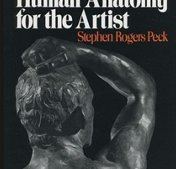 Atlas of Human Anatomy For The Artist Pdf