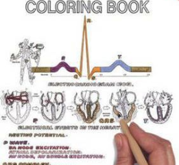 The Physiology Coloring Book Pdf