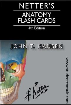 Netter's Anatomy Flash Cards Pdf