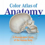 Download Anatomy Atlas Pdf Free [Latest Edition]