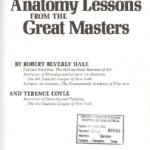 Download Anatomy Lessons from the Great Masters Pdf