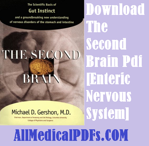 The Second Brain Pdf